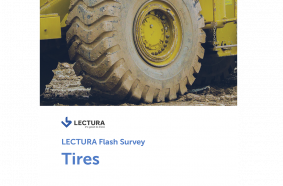 Flash Survey - Tires