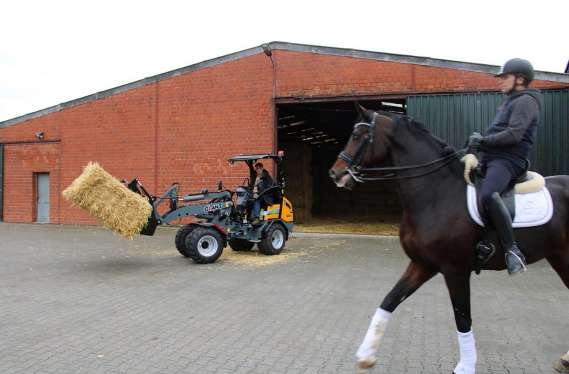 No disturbance: Work with the horses can always go on while the electric loader is work-ing.