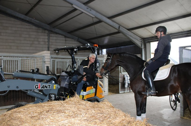 """No fear: While Dietmar Hax with """"De Niro's Erbe H"""" is getting back from the training, his father is bringing fresh straw in with the GIANT."""