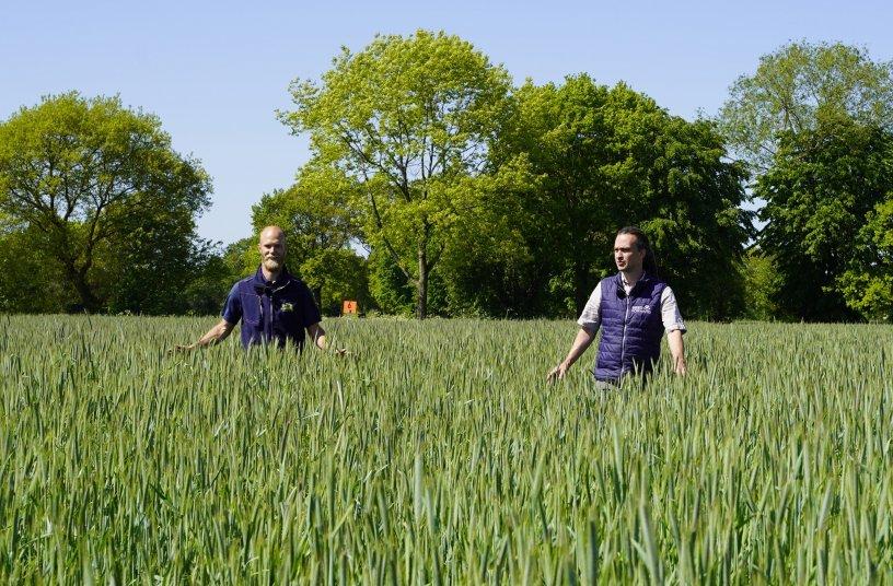 Daniel Husmann (Saaten-Union) und Jan Ritter (Seedforward) <br>Bildquelle: SAATEN-UNION GmbH