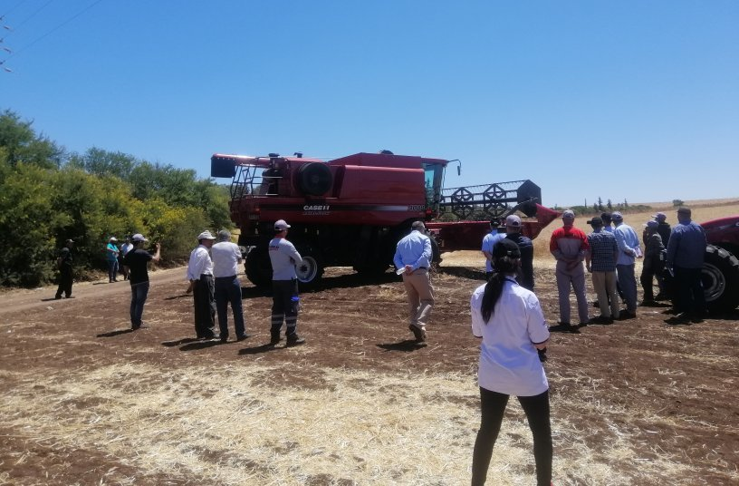 Farmers test out the Axial-Flow in Morocco<br>IMAGE SOURCE: CNH Industrial N.V. Corporate Office; CASE IH
