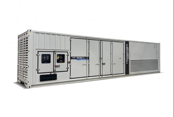 HIMOINSA HGS-1030 NG/LPG generator