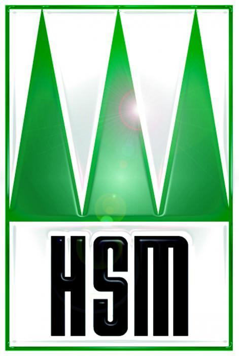 HSM Hohenloher Spezial-Maschinenbau